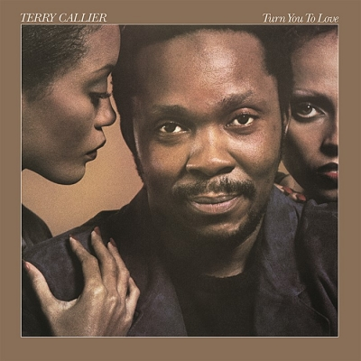 terry callier - turn you to love (33rpm lp)