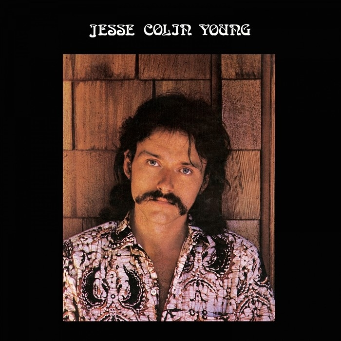 jesse colin young - song for juli (33rpm lp)